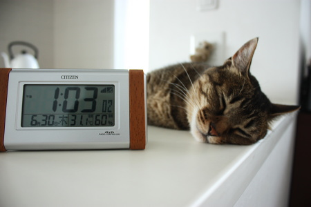 あー涼しくない