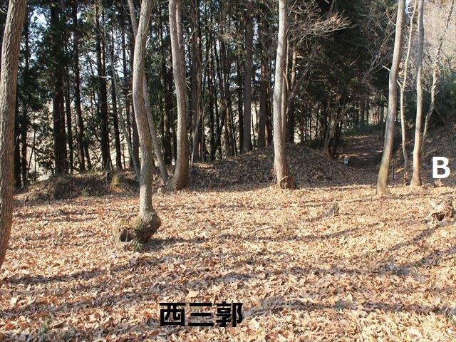 IMG_2682.jpg