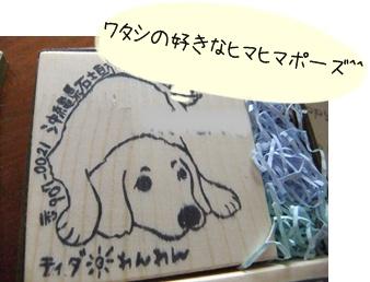 2011_09120022.jpg