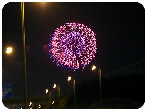 海の公園の花火