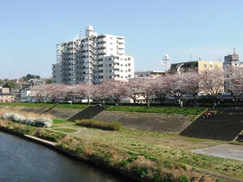 ららぽーと横浜&新横駅ビル